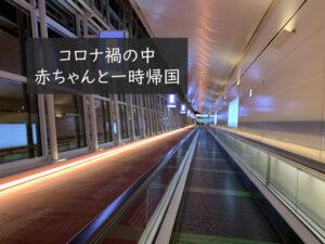 【一時帰国】コロナ禍の中、赤ちゃん連れて日本入国